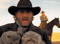 cowboys_herding_cats