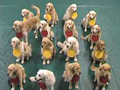 golder retrievers explain atoms