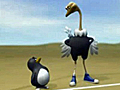 Penguin_vs_Ostrich