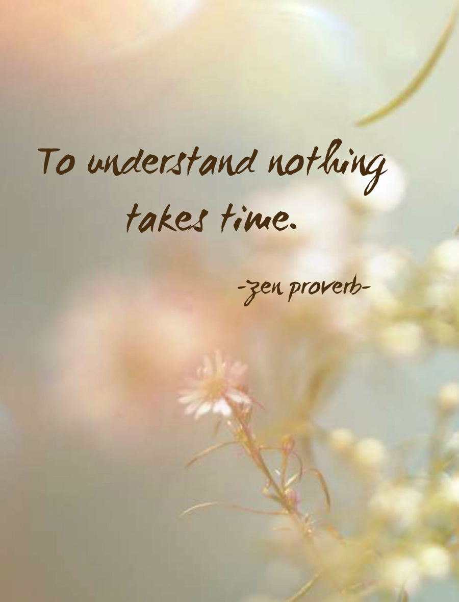 to understand nothing takes time